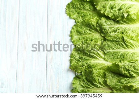 Fresh salad lettuce on a blue wooden background - stock photo