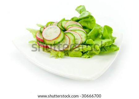 fresh salad on the white background