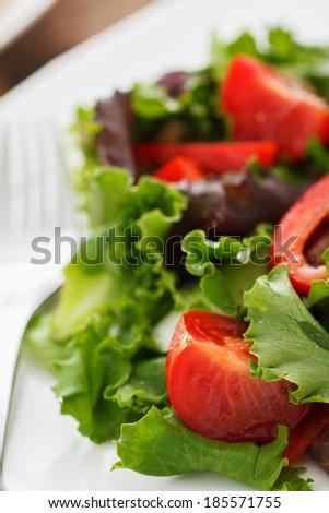 Fresh Salad with Balsamic & Vinegar Dressing - Shallow Depth of Field - stock photo