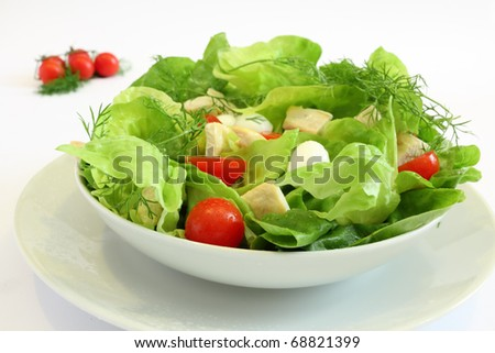 Fresh salad with chicken breast,lettuce, tomatoes and mozzarella cheese - stock photo