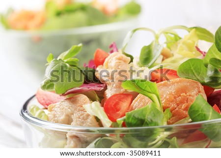 Fresh salad with chicken meat - stock photo