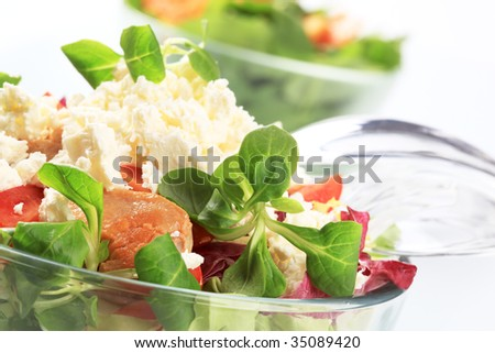Fresh salad with chicken meat and cheese - stock photo