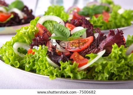 Fresh salad with onion, tomato and basil