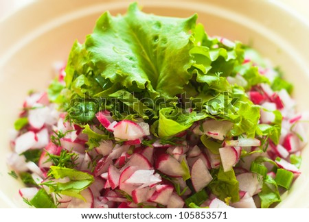 fresh salad with radishes, lettuce and onions