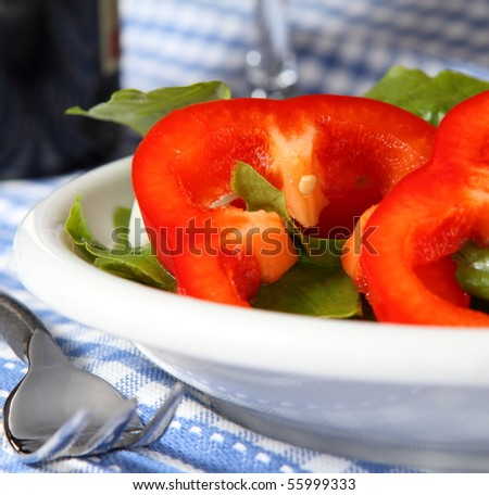 Fresh salad with sweet red pepper rings on a porcelain plate - stock photo