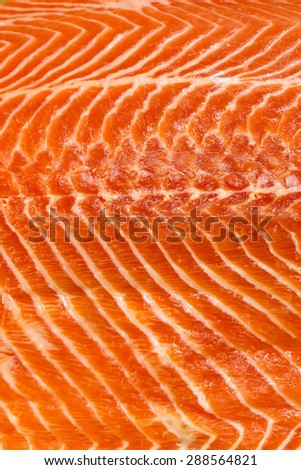 Fresh salmon fillet meat