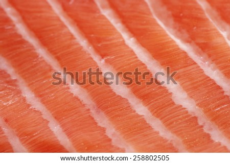 Fresh salmon fillet salted with coarse sea salt close up