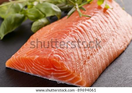 fresh salmon fillet with herbs - stock photo