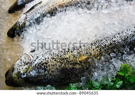 Fresh salmon in the ice closeup,in Market - stock photo