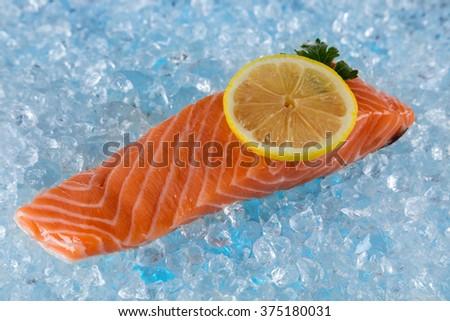 Fresh salmon isolated on ice drift - stock photo
