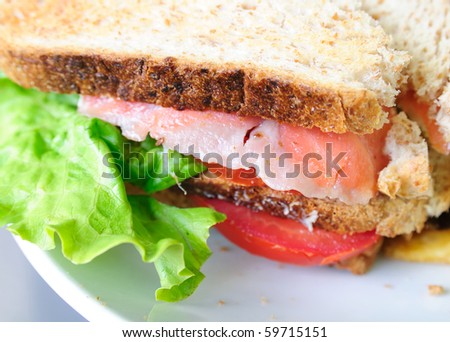 Fresh Salmon Sandwich and French fries - stock photo