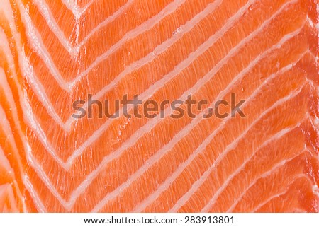Fresh salmon uncooked fillet
