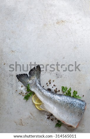 Fresh salmon with spices - healthy food, diet or cooking concept, selective focus - stock photo