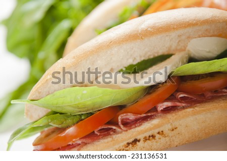 Fresh sandwich with tomato basil mozzarella and ham - stock photo