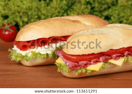 Fresh sandwiches with lettuce, cheese, salami and smoked salmon