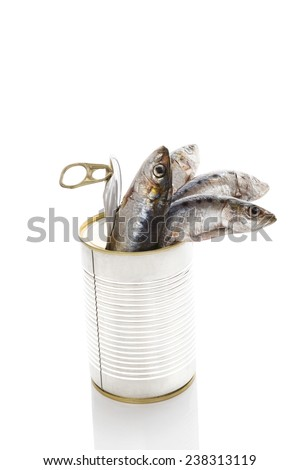 Fresh sardines fish in open can isolated on white background. Culinary seafood eating. Healthy fresh food.  - stock photo