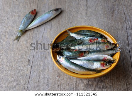 Fresh sardines in a bowl - stock photo