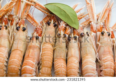 Fresh Scampi cooked - stock photo