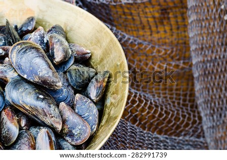fresh sea mussels in a copper bowl on a background of fishing nets - stock photo