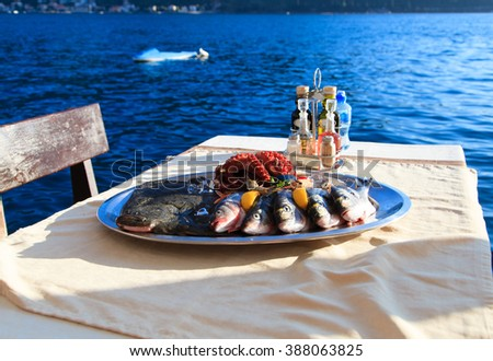 fresh seafood plate in restaurant near the sea - stock photo