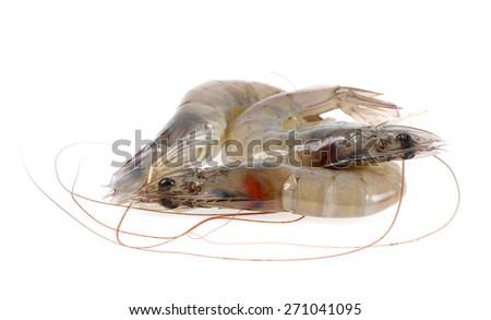 Fresh shrimp isolate on white background. - stock photo