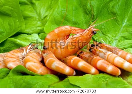 Fresh shrimp on lettuce leaf - stock photo