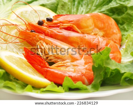 Fresh shrimps       - stock photo