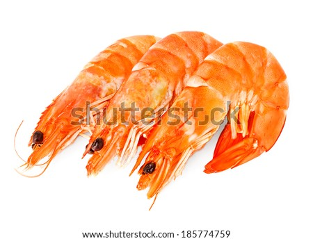 fresh shrimps isolated - stock photo