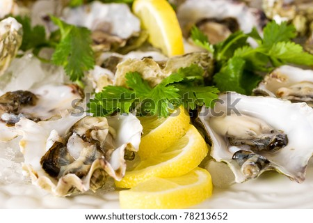 Fresh Shucked Oysters on a bed of crushed ice. - stock photo