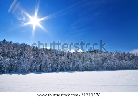 Fresh Snow  Landscape on sunny day - stock photo