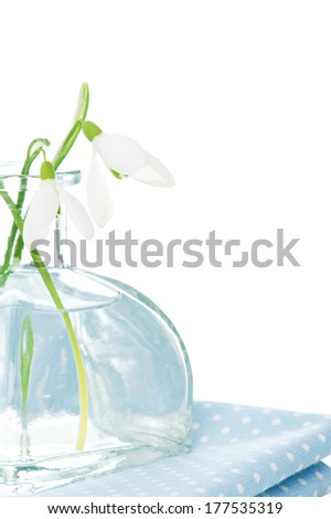 Fresh snowdrops in transparent vase on blue napkin isolated on white