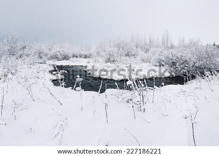 Fresh snowfall in the wilderness covering riverbank of a small stream - stock photo