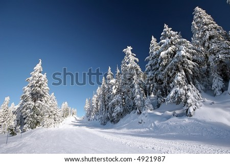 Fresh snowfall waiting for the first skiers - stock photo