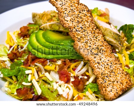 Fresh Southwestern Style Salad with Avocado Slices and Seeded Cracker - stock photo