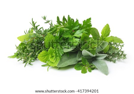 Fresh spices and herbs isolated  - stock photo