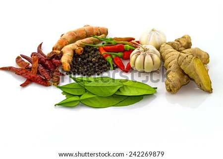 Fresh spices   isolated on a white background - stock photo