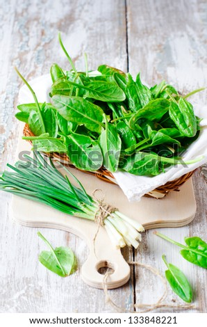Fresh spinach and green onion ,selective focus - stock photo