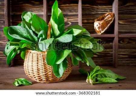 Fresh spinach in a basket on the table on a dark background. Spinach is an annual vegetable is a herbaceous plant of the family Chenopodiaceae.