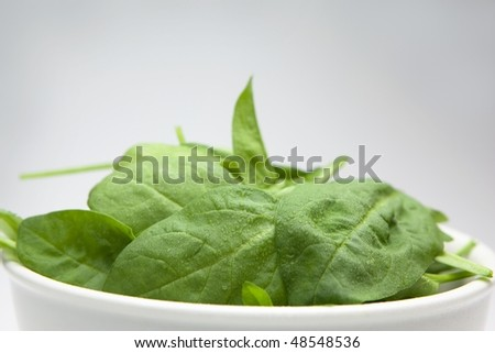 Fresh spinach in a white bowl.
