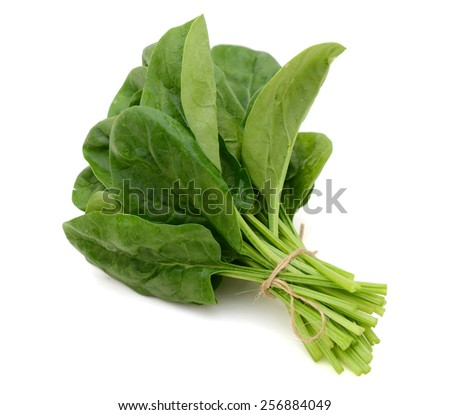 fresh spinach on white background  - stock photo