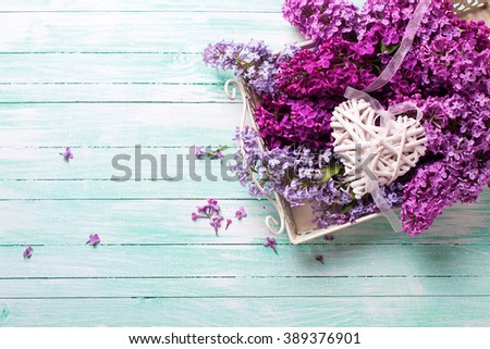 Fresh splendid lilac flowers on tray  and  white decorative heart on turquoise painted wooden planks. Selective focus. Place for text. - stock photo