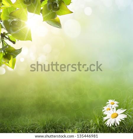 Fresh Spring bokeh background - stock photo