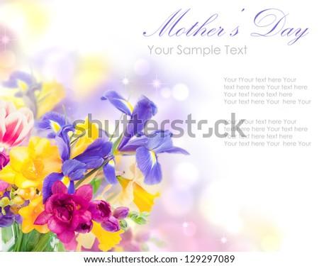 Fresh spring flowers isolated on white - stock photo