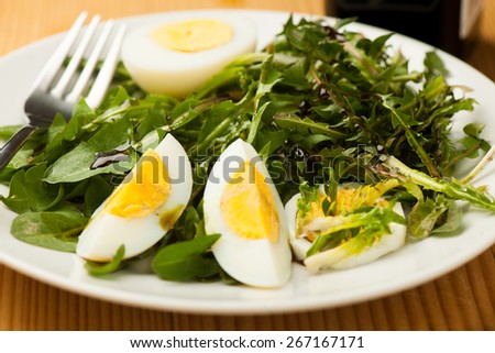 Fresh spring green  dandelion salad with eggs on a plate closeup - stock photo