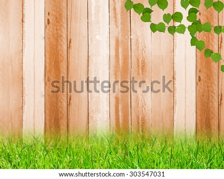 Fresh spring green grass and leaf plant on wood fence background - stock photo