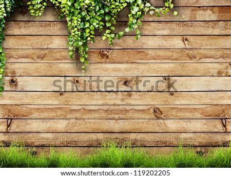 Fresh spring green grass and leaf plant over wood fence background