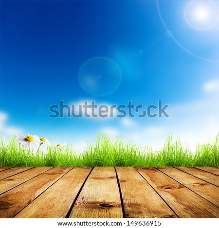 Fresh spring green grass and white flower camomile with blue bokeh and sunlight and wood floor. Natural background - stock photo