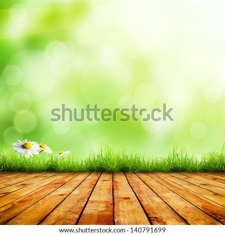 Fresh spring green grass and white flower camomile with green bokeh and sunlight and wood floor. Beauty natural background - stock photo