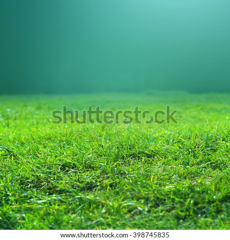 Fresh spring green grass on green background may use as texture or background. - stock photo