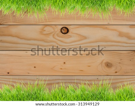 Fresh spring green grass on wood fence background